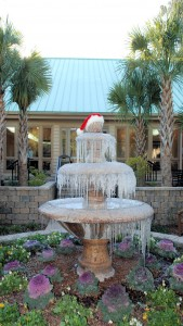 See - it does get cold in South Carolina!